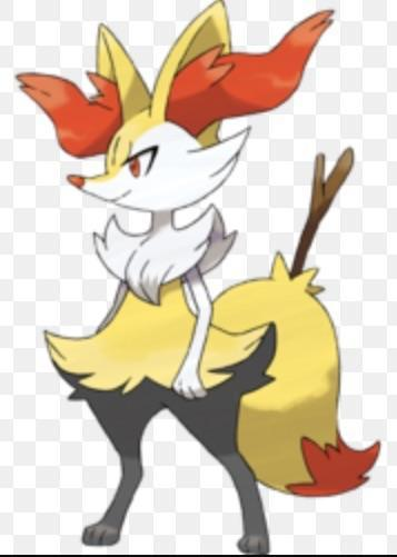 Braixen: Do you like to cook?