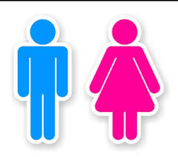 What gender are you ?