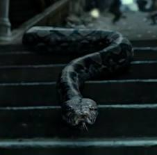 7) What is the name of Voldemort's snake?