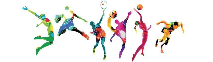 What is your favourite sport?