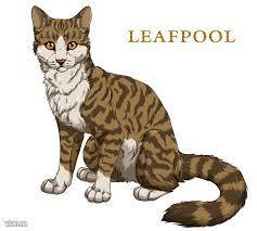 Who was Leafpool's mentor?