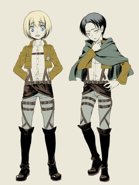 Esay question: Who is taller Armin or Levi?