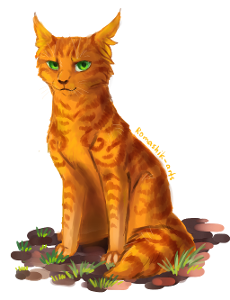 Question Three; Which Two Things Did Ivypool Say To Firestar?