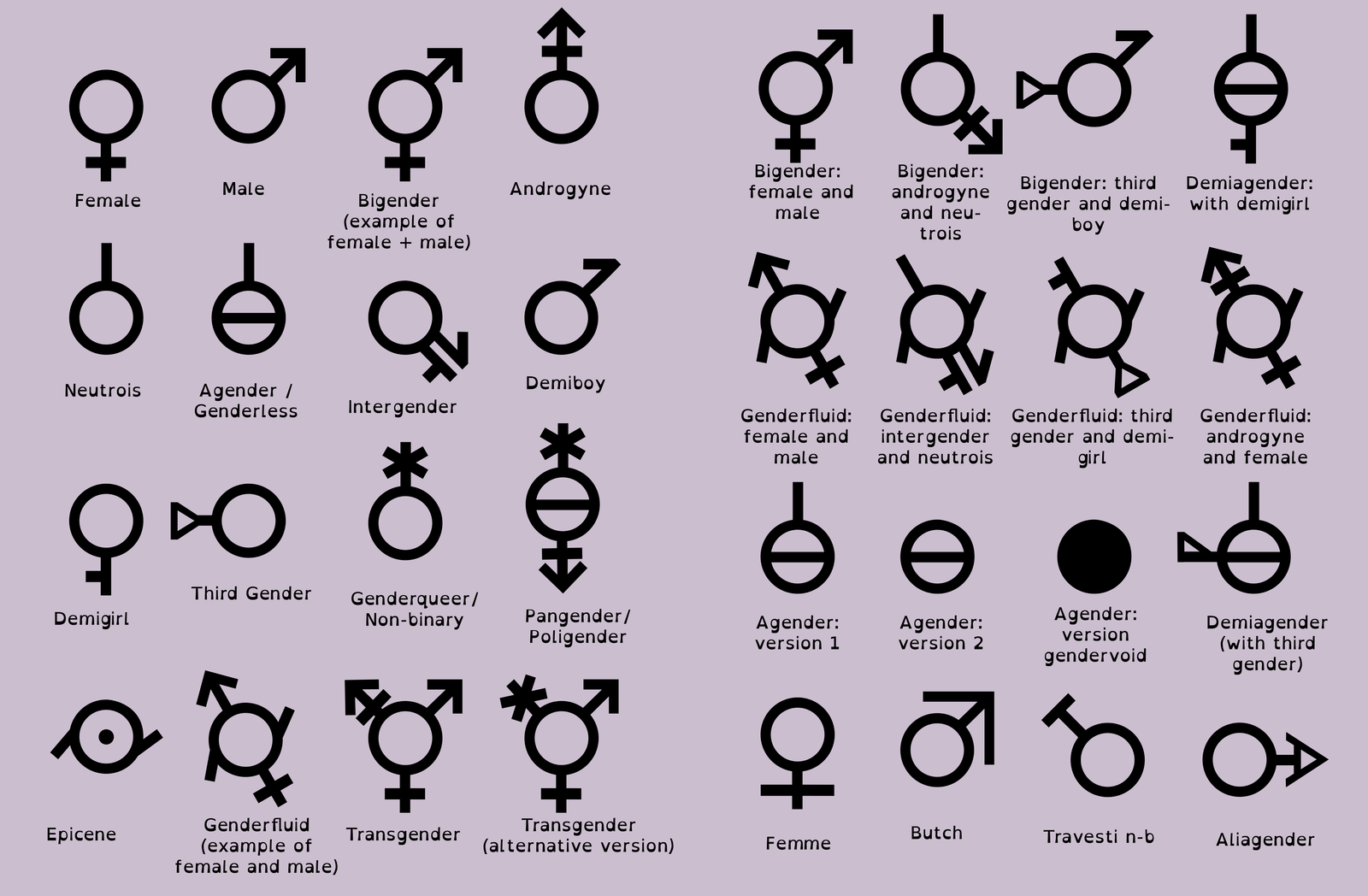 Sexuality and gender quiz