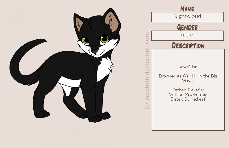 What is name of the first medicine cat of shadowclan?