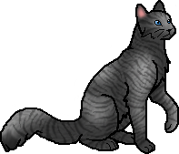 Jayfeather was reincarnated from: