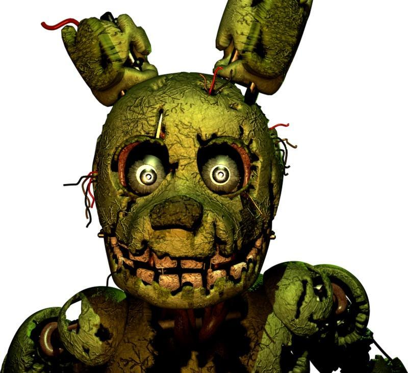 Is spring trap beautiful?