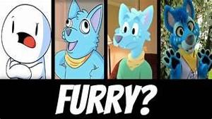 Quiz furry test Are you