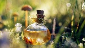 Amortentia, causing a powerful infatuation/obsession from the drinker, is the most powerful love potion in existence. Even if the person doesn't acknowledge their affection themselves, it has a different aroma for everyone who smells it; what do you smell?...