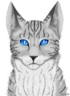 When Jayfeather had to vote for the Ancient cats to stay or leave, where did he push his pebble?