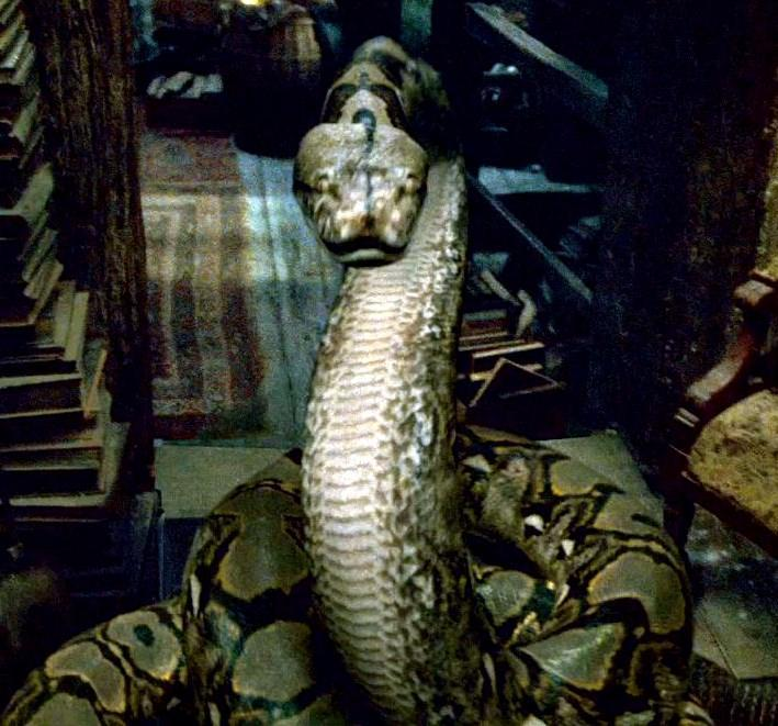 Who killed Nagini?