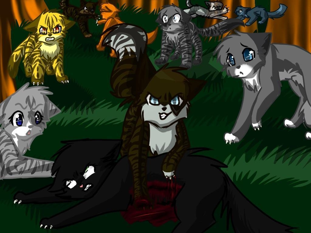 Was it right for Hawfrost to kill Hollyleaf?