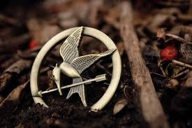 Which Hunger Games character do you identify with? (remember personality, goals, character-not favoritism or appearance)