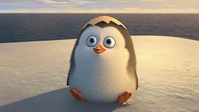 Which penguin do you think you are most like?
