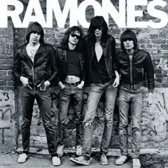 The Ramones had a song in Stephen King's 1989 film ,What wos the song ?.