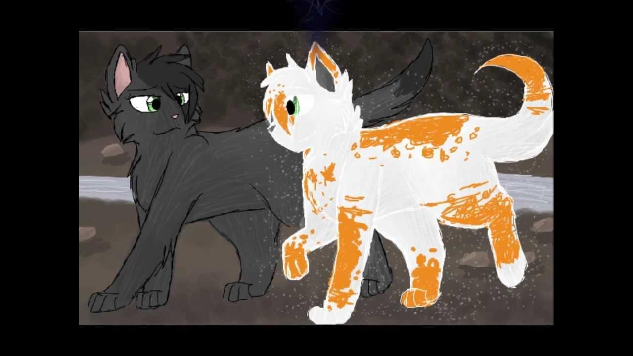 Do you think Fallen leaves and Hollyleaf should be together?