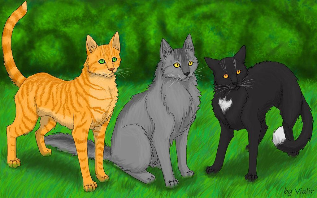 What did Ravenpaw say to Firestar abot the upcoming journery?