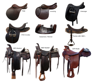 Witch tack (sadels bridles) do you like the most?