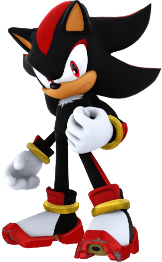 """Are you an idiot? Of course we're not going to kill her!"" yelled knuckles. He started to advance towards Silver, an angered look on his face before Shadow put a hand on his chest to stop him. ""Enough""."