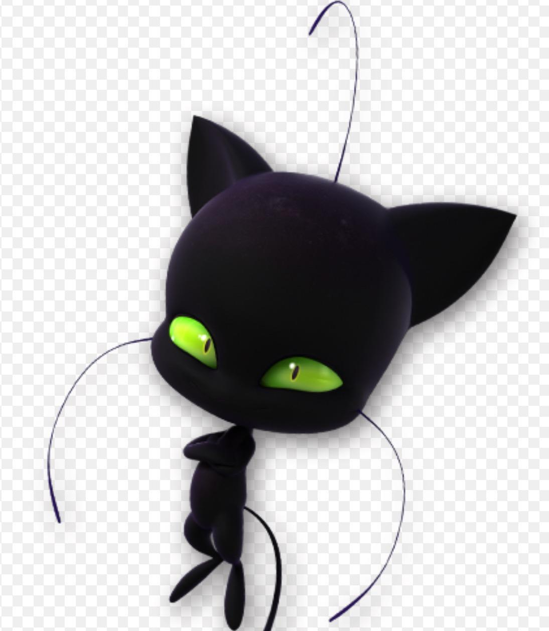 What is the name of Cat Noir's Kwami?
