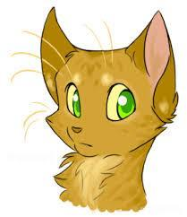 In the book into the wild what is firestar's name before he joins the clan?
