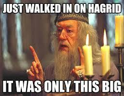 "Do you take offense when I say ""Hagrid's buttcrack"""