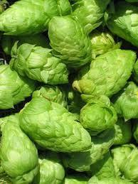From which country to Galaxy hops originate?