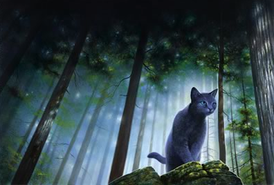 If you had the opportunity to meet Erin Hunter in person would you do it?