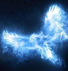 What's your patronus?
