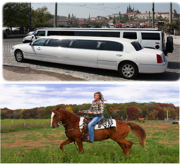would you rather travel in a limousine or on a horse back?