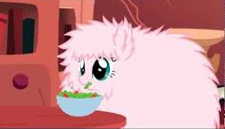 What are the three favourite foods of Fluffle Puff?