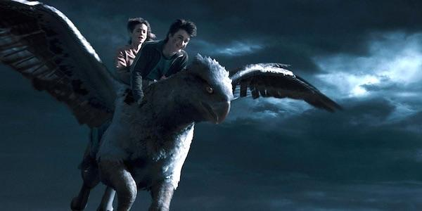 What is the name of the hippogriff Harry and Hermione used to save Sirius?