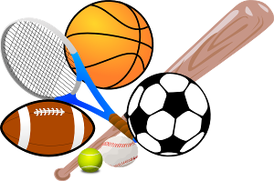 Which sport would you like to play (out of these)?