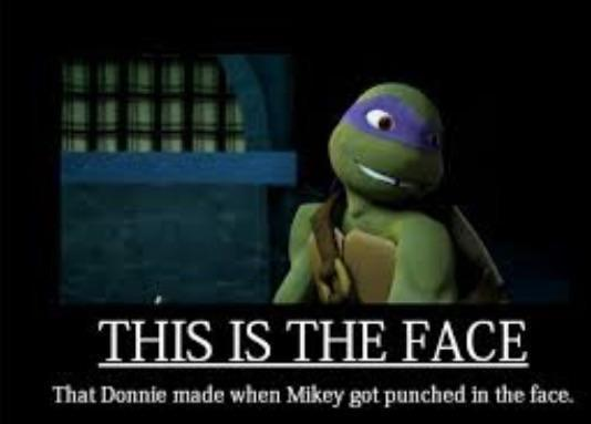 Would Donnie really make this face when Mikey gets punched in the face?
