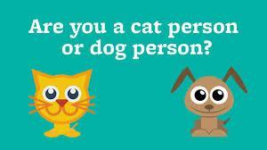 here's a very easy one. what do you like better, a cat or dog?