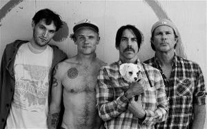 Are the red hot chili peppers gay ?. This is a poll done by google website.