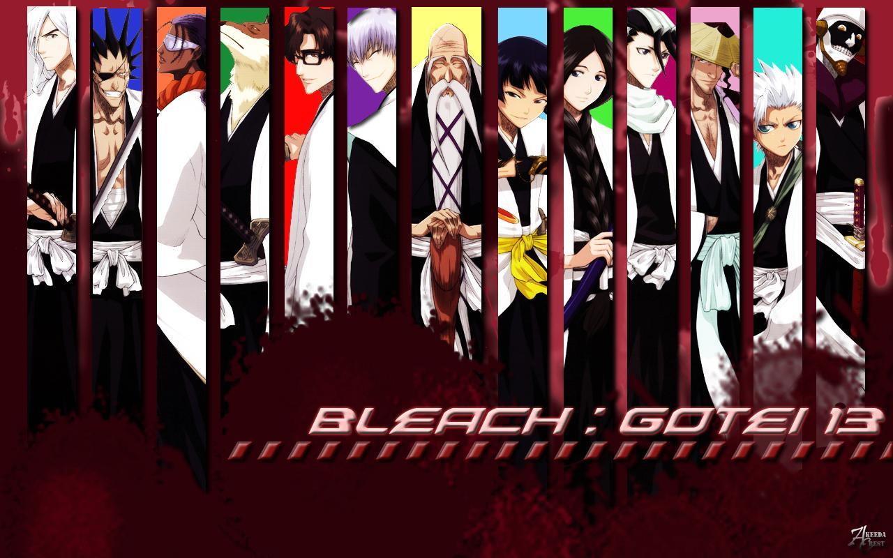 who is !not! a !full! soul reaper