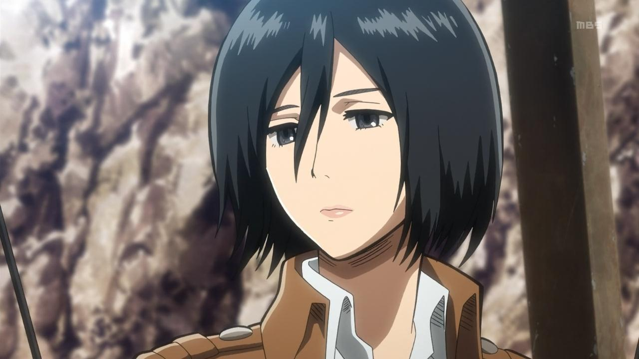 What's Mikasa's race?