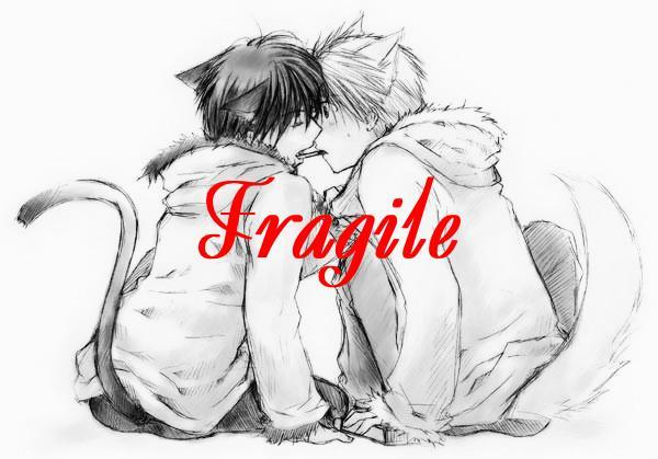 The Characters of Fragiles