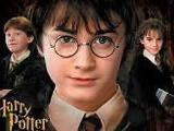 The really strange,random,awkward,crazy and silly retelling of Harry Potters life