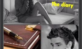 The diary (One direction Fan Fic)