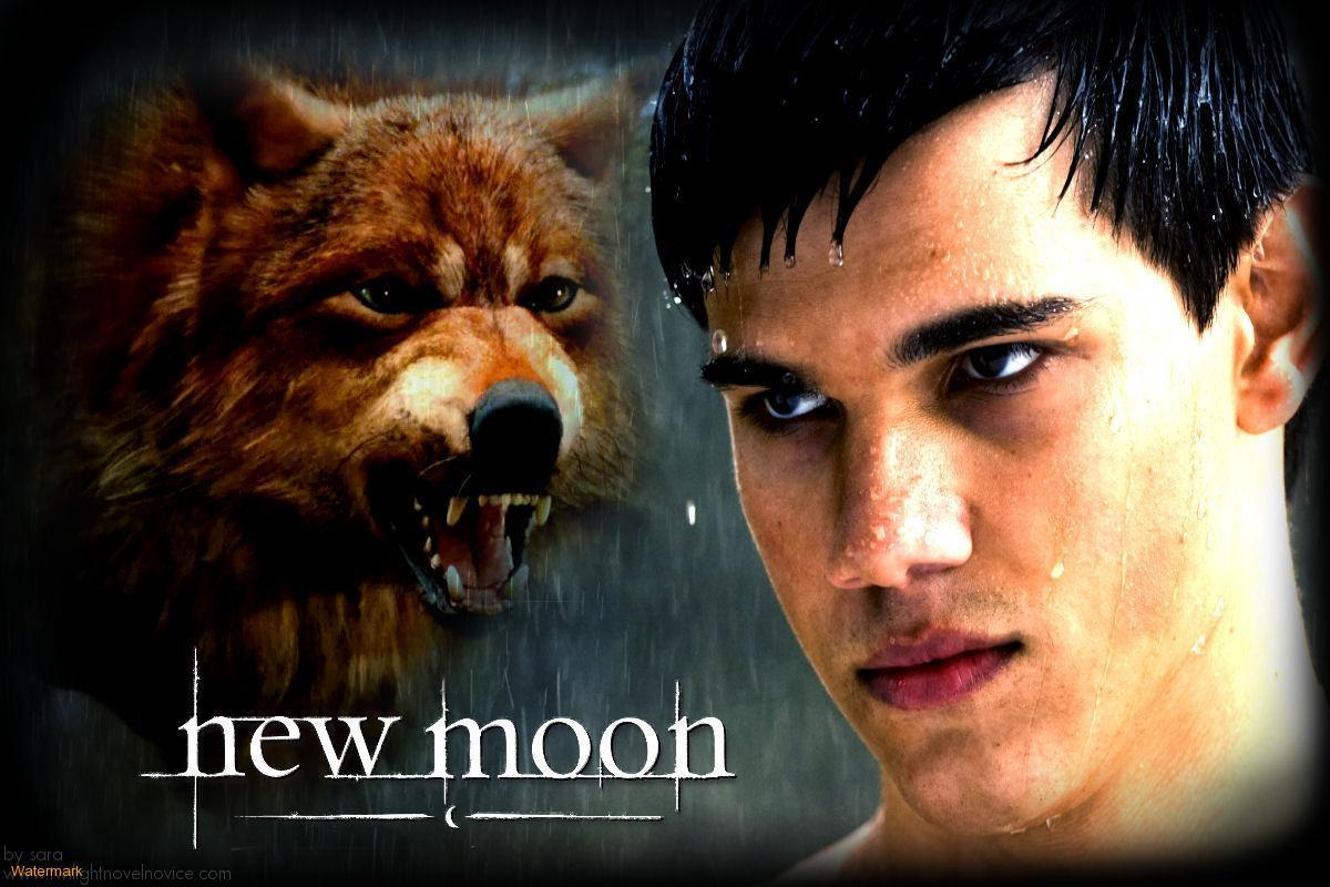 Silver Sky (Jacob Black Love Story)