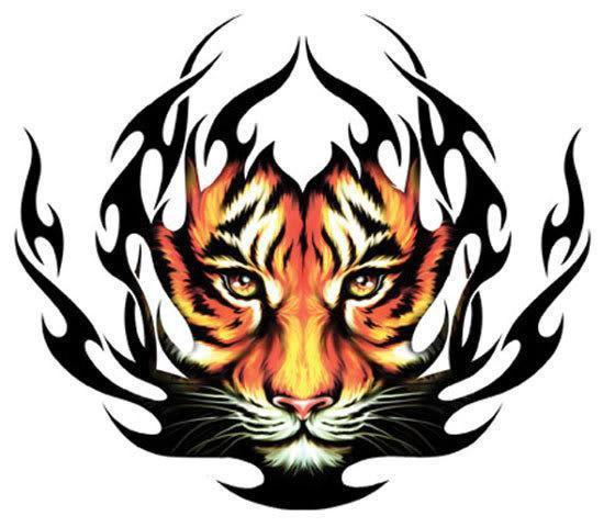 The Tiger Tribe