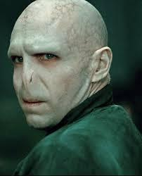 Voldy Is Moldy