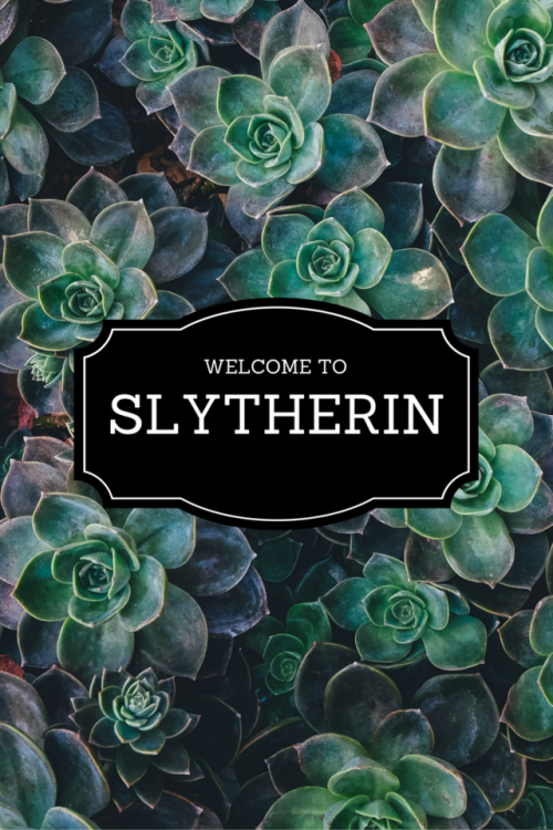 The tale of a not so bad Slytherin