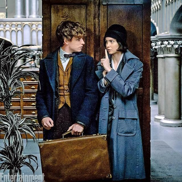 Tina and Newt fan fiction (Fantastic Beasts and Where to Find Them)