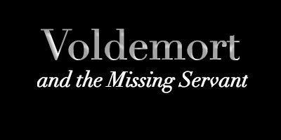 Voldemort and the Missing Servant