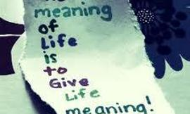 Just curious - what is the meaning of life?