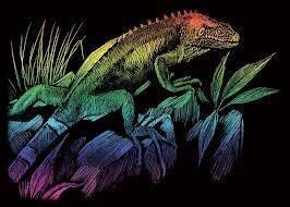 What does it mean when you see a rainbow iguana in your dreams?