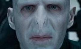 hey I know most of you like harry but what about voldemort?